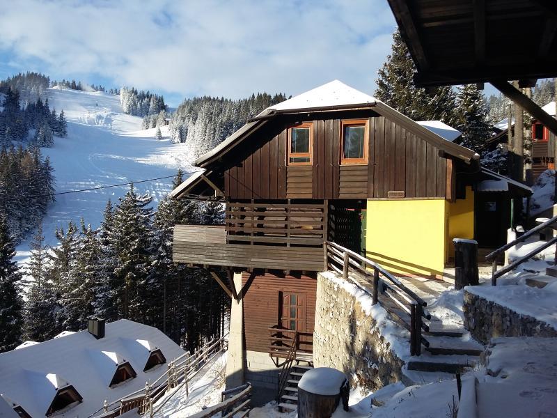 Apartment Celeia - Golte (ski, hike, bike) - Image 1 - Mozirje - rentals
