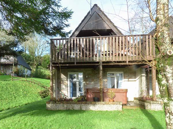 SPRUCE TREE LODGE, wooden lodge,hot tub, walks from door, on-site facilities including pools, sauna, tennis in Gunnislake Ref 930106 - Image 1 - Gunnislake - rentals