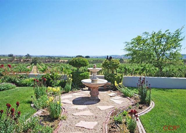 Gracious Elegance in Gorgeous Vineyard Setting - Image 1 - Paso Robles - rentals