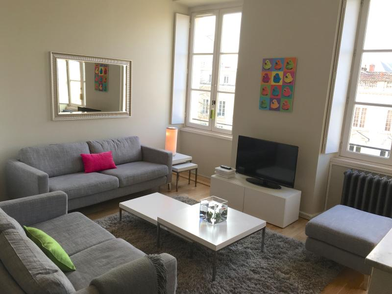 Prestige furnished T3 in front of the JardinPublic - Image 1 - Bordeaux - rentals