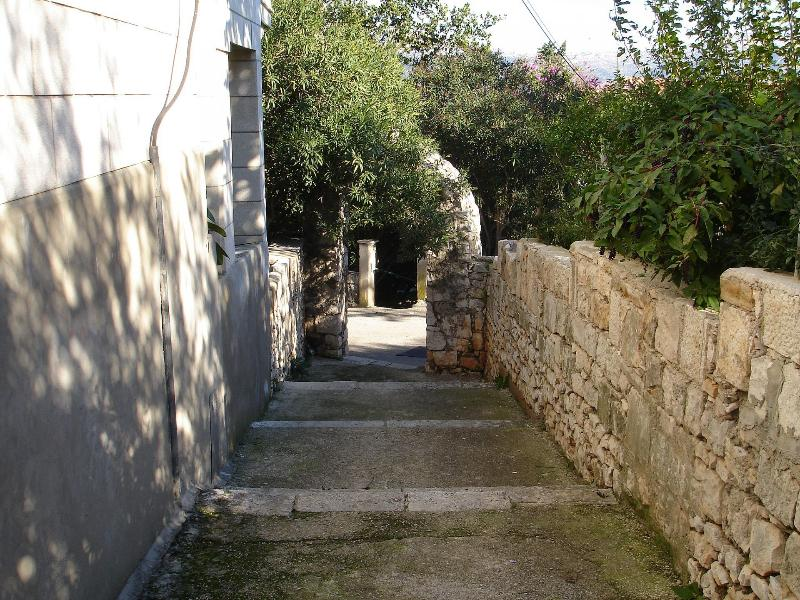 courtyard (house and surroundings) - 02114KORC SA1(2) - Korcula - Korcula - rentals