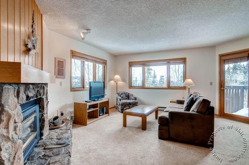 Woods Manor Condos - 303B - Image 1 - Breckenridge - rentals