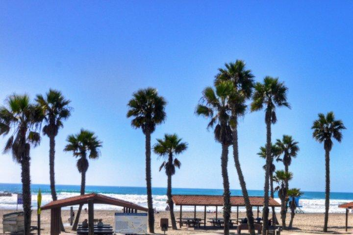 View from patio - Condo on the beach - MDM 213A - Oceanside - rentals