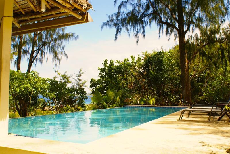 Infinity pool with swim up bar - SENTOSA VILLAS - Port Vila - rentals