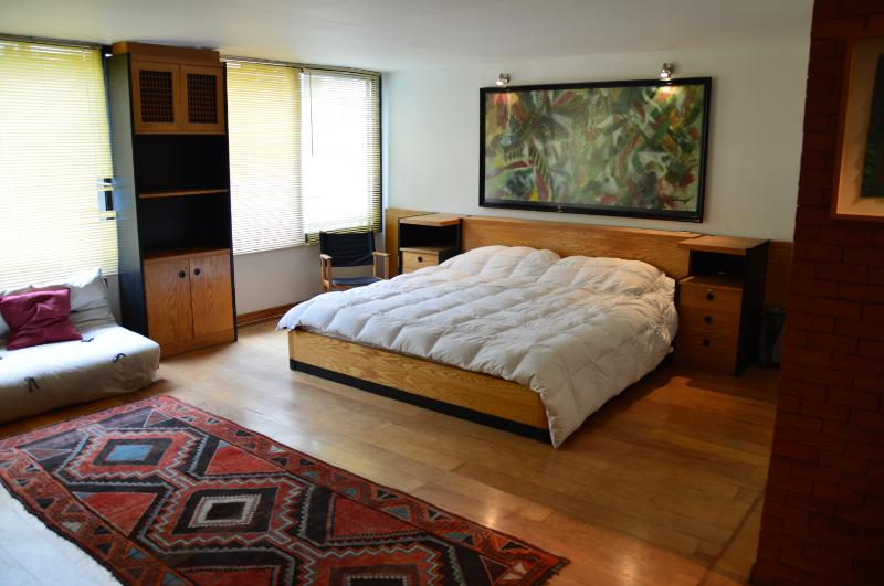 Spacious Yet Cozy Studio Apartment in El Golf - Image 1 - Santiago - rentals