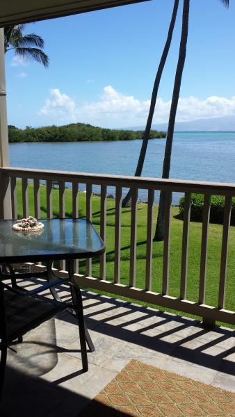 Molokai Wavecrest A202 - Image 1 - Kaunakakai - rentals