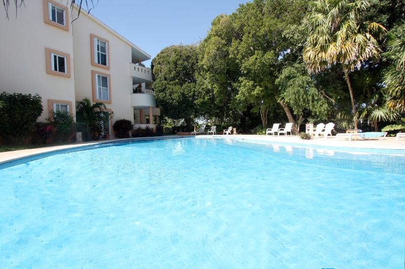 Chac Ha Community Pool - Handicapped Access Condo 5 Min Walk to Beach-Rana - Playa del Carmen - rentals
