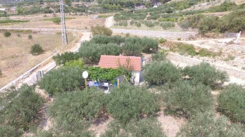 Oliva Cottage - Image 1 - Bol - rentals