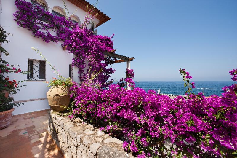 Charming Apartment near Sorrento - Alice - Image 1 - Massa Lubrense - rentals