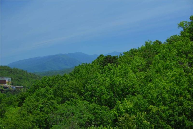 A Beautiful Gatlinburg View - Image 1 - Gatlinburg - rentals