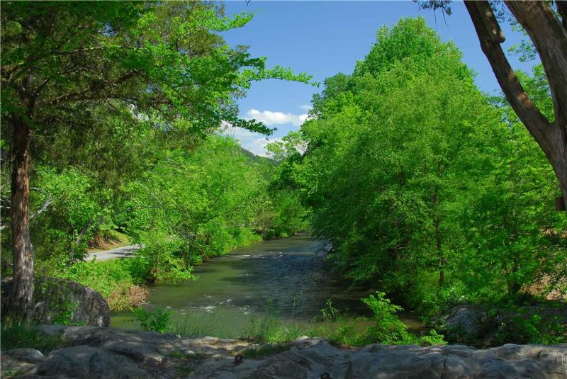 River View - Image 1 - Sevierville - rentals