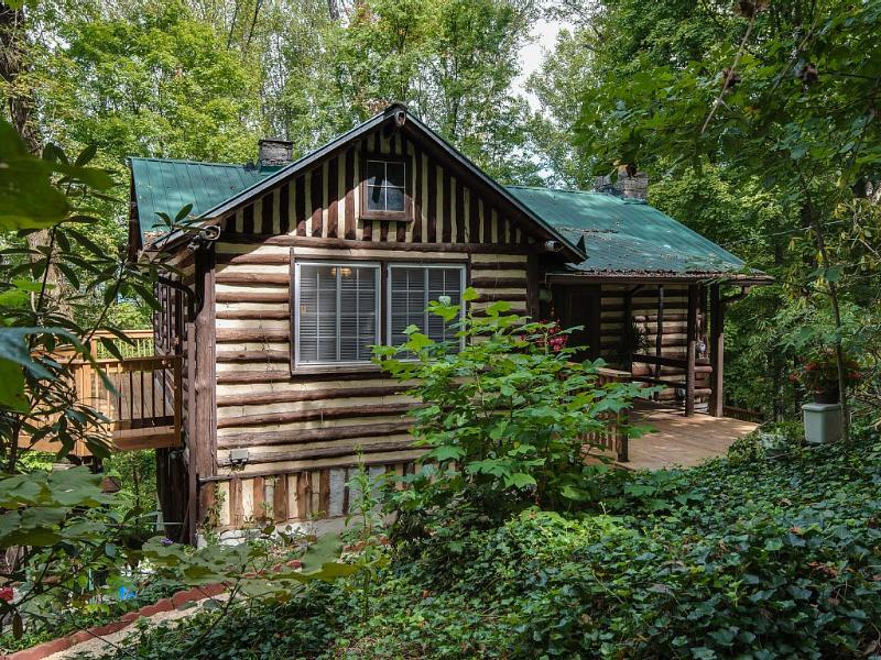 Old World Swiss Cabin Nestled - Image 1 - Knoxville - rentals