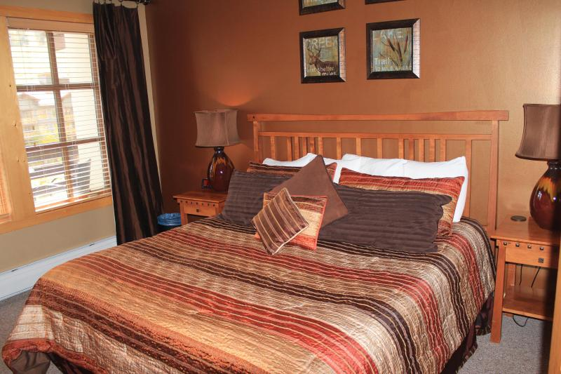 From $139/ night    3 -1 bedrooms to choose from! 2 and 3 bedroom as well - Image 1 - Copper Mountain - rentals