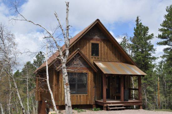 New Cabin with beautiful views!!! - Image 1 - Lead - rentals