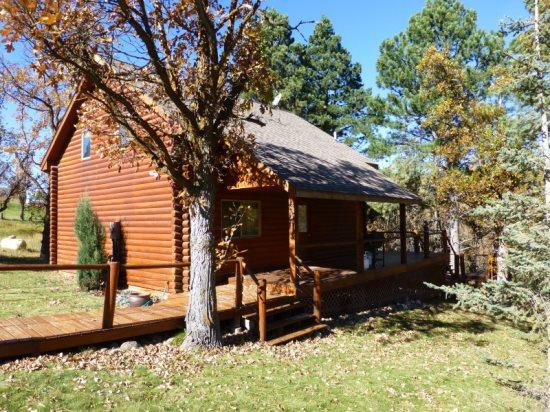 Cozy cabin close to Deadwood with outdoor fire pit - Image 1 - Sturgis - rentals