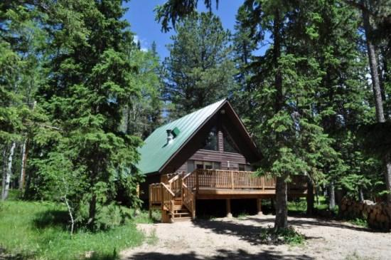 Cozy A-Frame Cabin tucked in the trees! - Image 1 - Deadwood - rentals