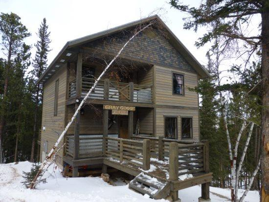 Newly built 4 bedroom cabin with private hot tub - Image 1 - Lead - rentals