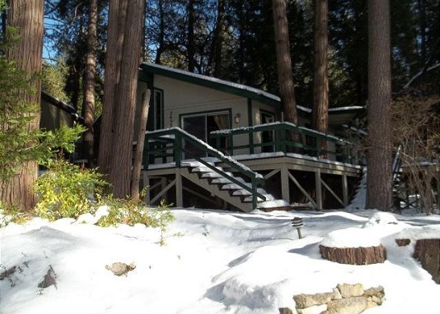 Cozy Cottage Front View - Charming Cottage Nestled In The Pines - Idyllwild - rentals