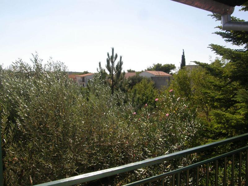 A1(5): view - 5779 A1(5) - Pirovac - Pirovac - rentals