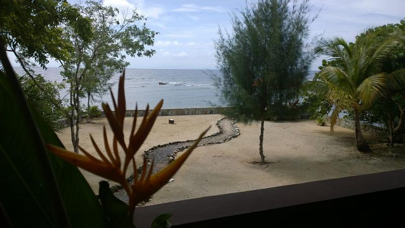 Luxury Home, Water Front, Jacuzzi, Pool, Beach. - Image 1 - Sandy Bay - rentals