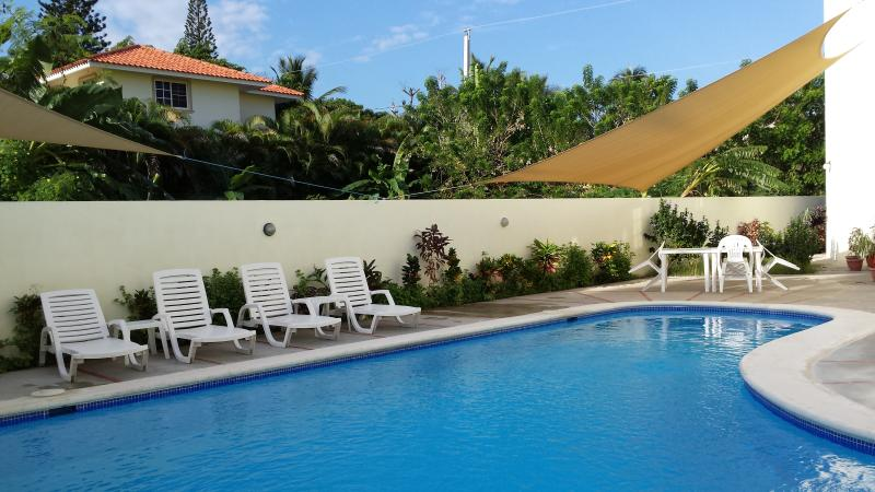 Beach one-bedroom apartment #11 - Image 1 - Puerto Plata - rentals