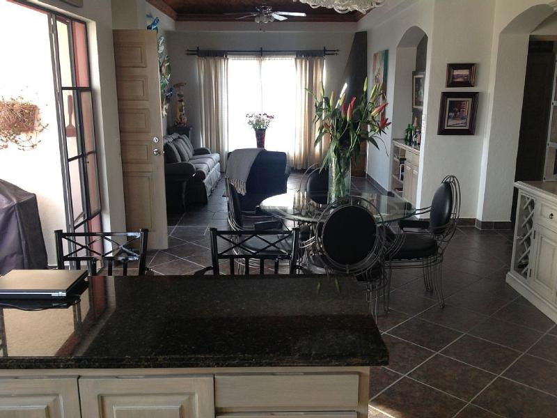 Luxury Penthouse Condo with gorgous views - Image 1 - San Miguel de Allende - rentals