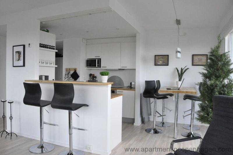 Copenhagen - 427001 - Image 1 - Copenhagen - rentals