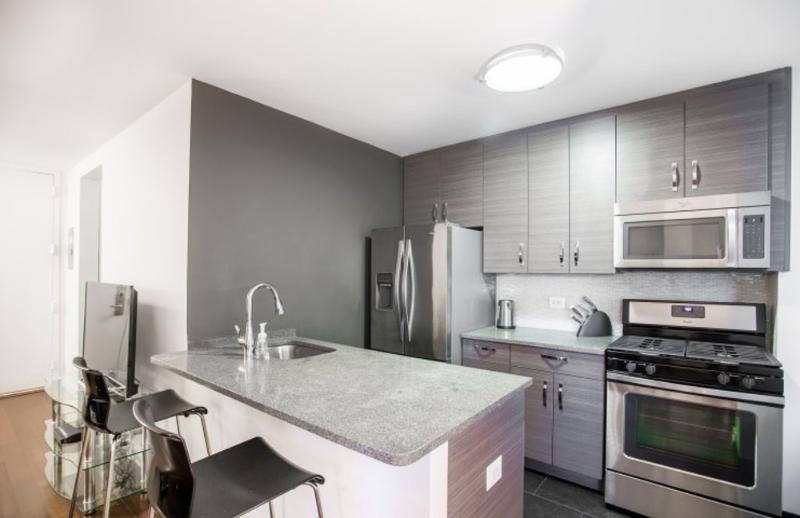 STUNNING 1 BEDROOM NEW YORK APARTMENT - 2 - Image 1 - Long Island City - rentals