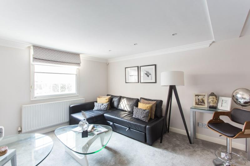 onefinestay - Avery Row private home - Image 1 - London - rentals