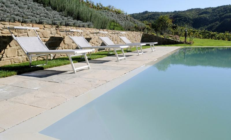 4 bedroom Independent house in Greve in Chianti, Chianti, Tuscany, Italy : ref 2307291 - Image 1 - Greve in Chianti - rentals