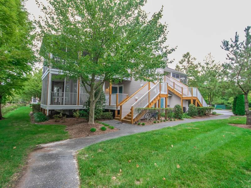 56051 Pinewood Drive - Image 1 - Bethany Beach - rentals