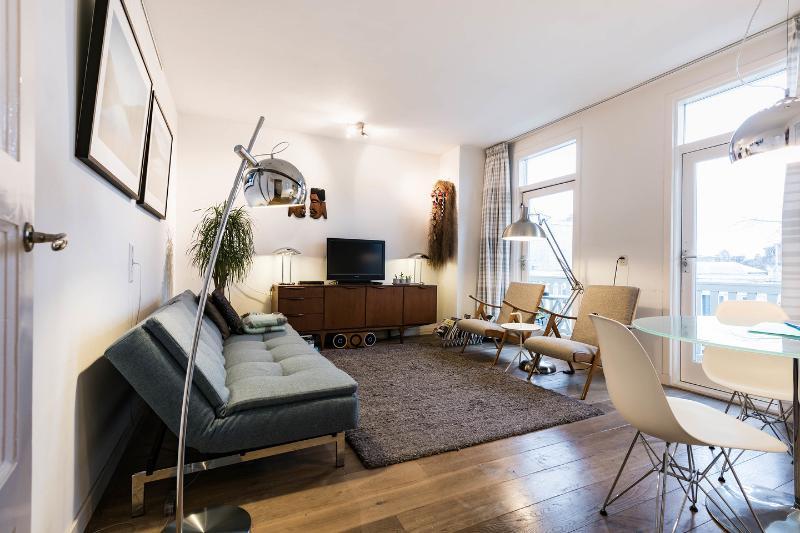 Living Room - Linnaeussuite: award winning apt with roofterrace - Amsterdam - rentals