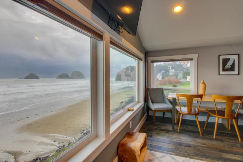 Oceanfront, dog friendly, newly remodeled - all the best! - Image 1 - Oceanside - rentals