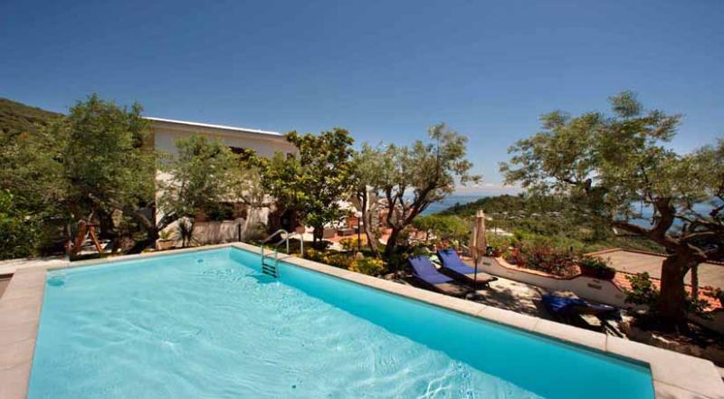 01 Villa Sirena pool area - VILLA SIRENA Marina del Cantone - Sorrento area - Marina del Cantone - rentals