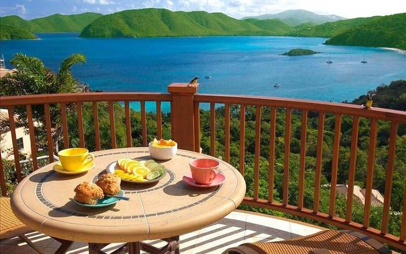 The Peter Bay 1BR Honeymoon Suite at St. John - Image 1 - Peter Bay - rentals