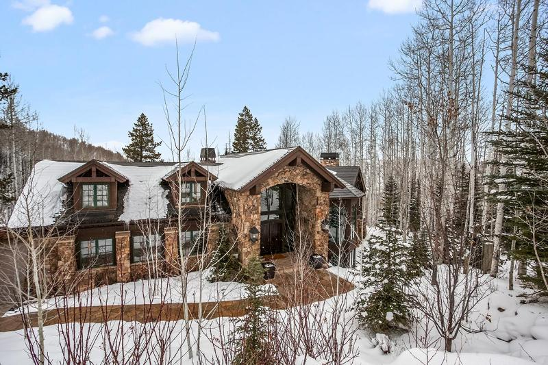 Strawberry 833, Sleeps 14 - Image 1 - Avon - rentals