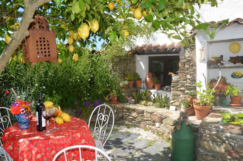 Sunflower Cottage, Private courtyard. Enjoy a relaxing drink in the shade of the Lemon Tree - Sunflower Cottage Rural Portugal - Castelo Branco - rentals