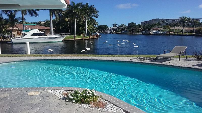 Spectacular Backyard Playground on the Water - Image 1 - Pompano Beach - rentals