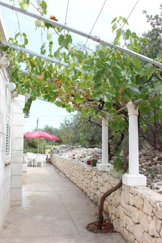 courtyard - A00214LUMB R4(2) - Lumbarda - Lumbarda - rentals
