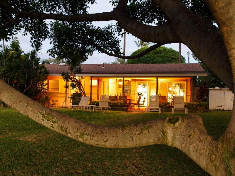 Here is your Hawaiian Cottage! 100+ yr old Banyan frames this 60's beauty! - HOUSE! Beachfront House Kihei Maui Private Slp 6 - Kihei - rentals