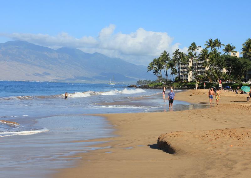 Beautiful Kamaole II Beach across the street just a five min. walk from lanai.. - Beautiful Maui Home Away From Home - Kihei - rentals