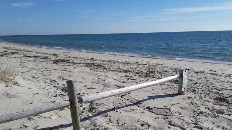 BY THE SEA IS WHERE YOU WANT TO BE!! DOG FRIENDLY 129982 - Image 1 - West Dennis - rentals