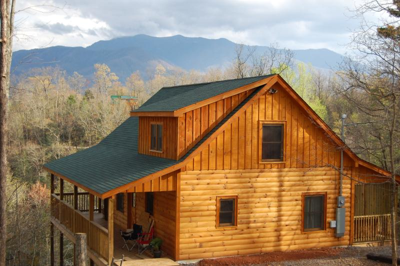 In the Mood Log Cabin - Image 1 - Gatlinburg - rentals