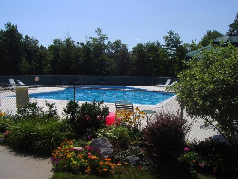 BEAUTIFUL condo on LITTLE TRAVERSE BAY GOLF RESORT with outdoor pool - GOLF RESORT CONDO WITH POOL/TENNIS/DINING! - Harbor Springs - rentals