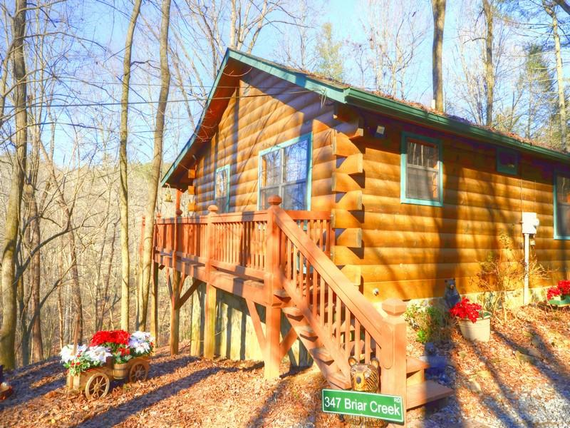 T&M Creek Cabin - T&M Creek Cabin - Ellijay - rentals