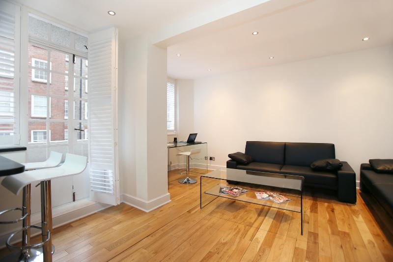 1 bed in a fantastic location by Knightsbridge, Chelsea Cloisters - Image 1 - London - rentals