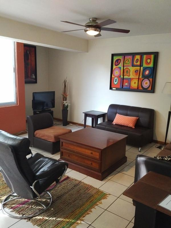 "Unit 2 / living room with ""32"" flat screen Tv.  Includes cable channels - Spacious Penthouse and condos - Guadalajara - rentals"
