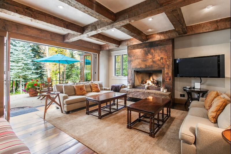 Private Vail Valley Estate - Image 1 - Edwards - rentals