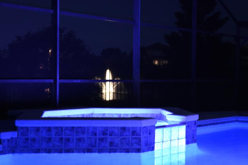 View of Fountain from SPA - Big Pool Villa with a Hot Tub - Kissimmee - rentals