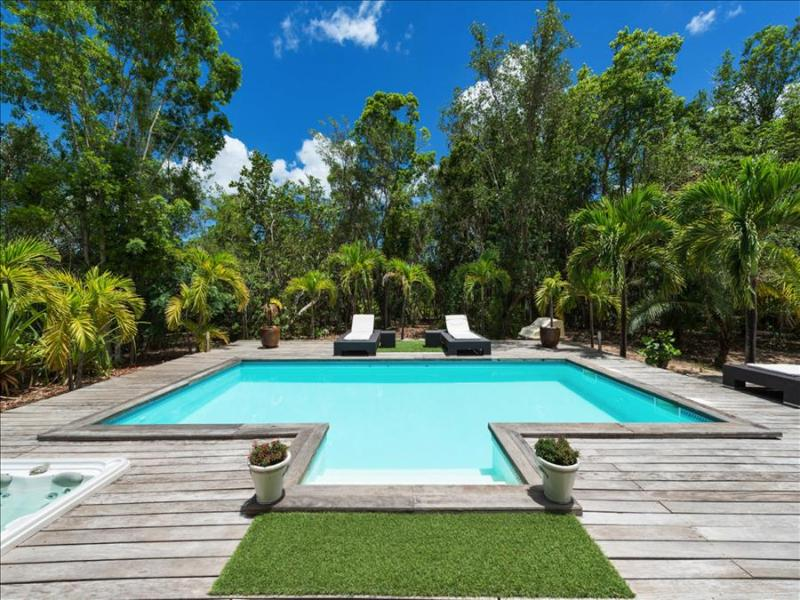 Perfect couple's hideaway with jacuzzi and private pool, - Image 1 - Terres Basses - rentals